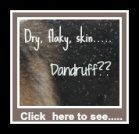 Dog dandruff causes dry flaky skin in dogs.