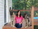 Dog care tips aimed at caring for your dogs at home.