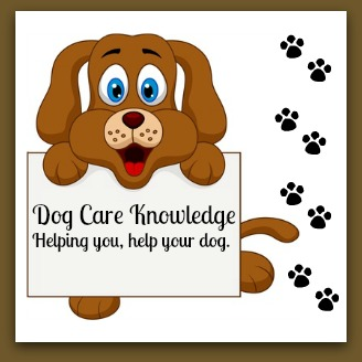 Dog Care Knowledge, helping you help your dog.