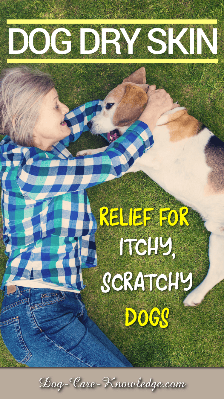 Relief for an itchy, scratchy dog that suffers from dry skin.
