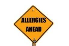 Dog allergy treatment plans.