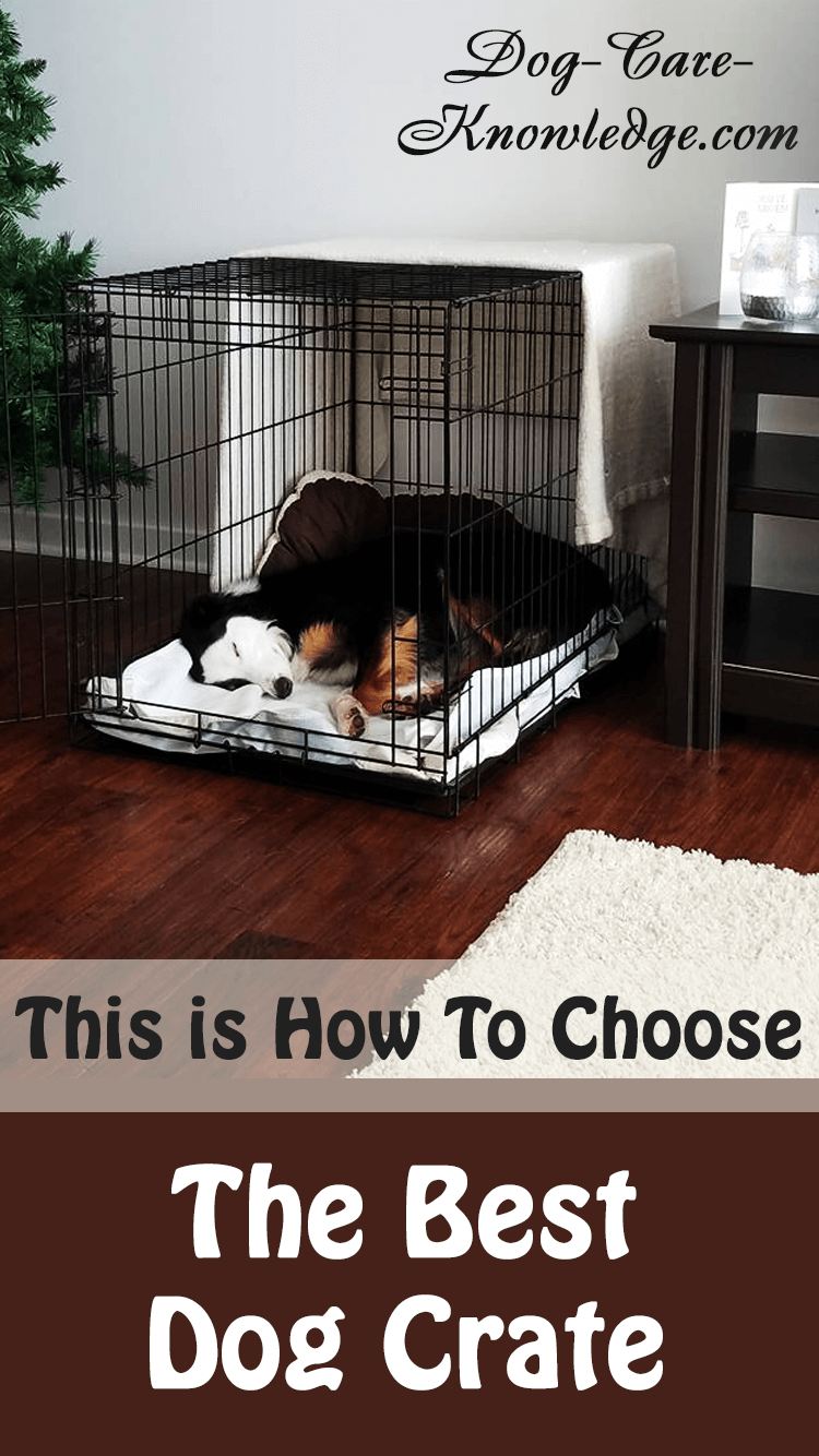 Here's how to choose the best dog crate that will work for your purpose i.e. house training, travel, etc.
