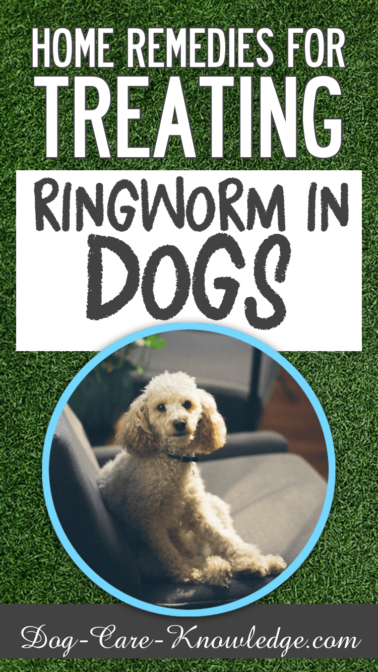 Home remedy for treating ringworm in dogs.