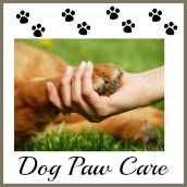 Caring for dog's paws.