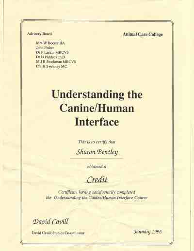 Understanding the Canine/Human Interface Certificate