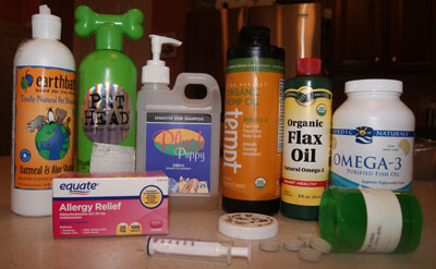 Dog allergy treatment options.