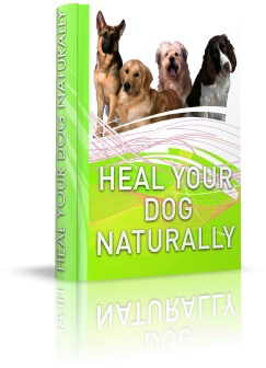 Heal Your Dog Naturally Book