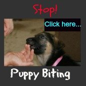 Stop your puppy biting by teaching them bite inhibition.